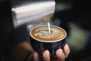 kava-u-salici