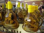 rakije-skorpije-i-zmije