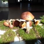 gljive-06